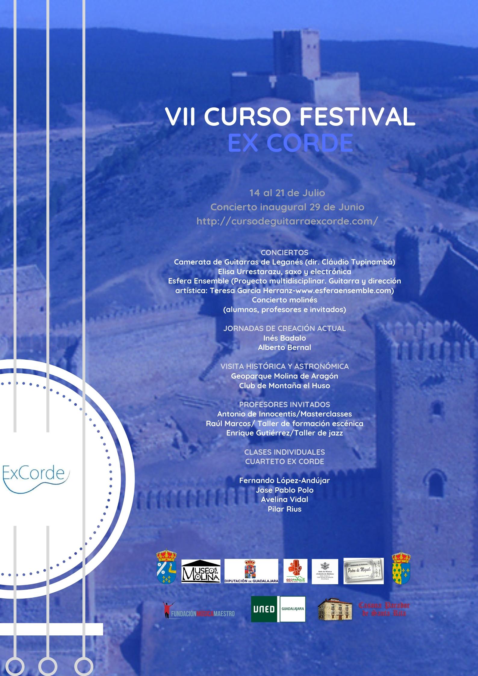 VII Curso Festival